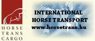 International Horse Transport
